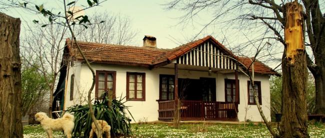 polonezkoy-evleri