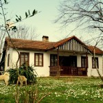 Polonezköy Evleri
